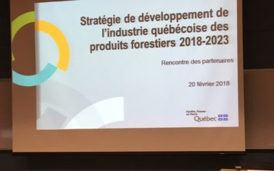 Stratégie de développement de l'industrie québécoise des produits forestiers pour la période 2018-2023 – La FIM participe aux échanges